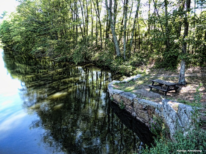 Late afternoon light in August along the Blackstone Canal.