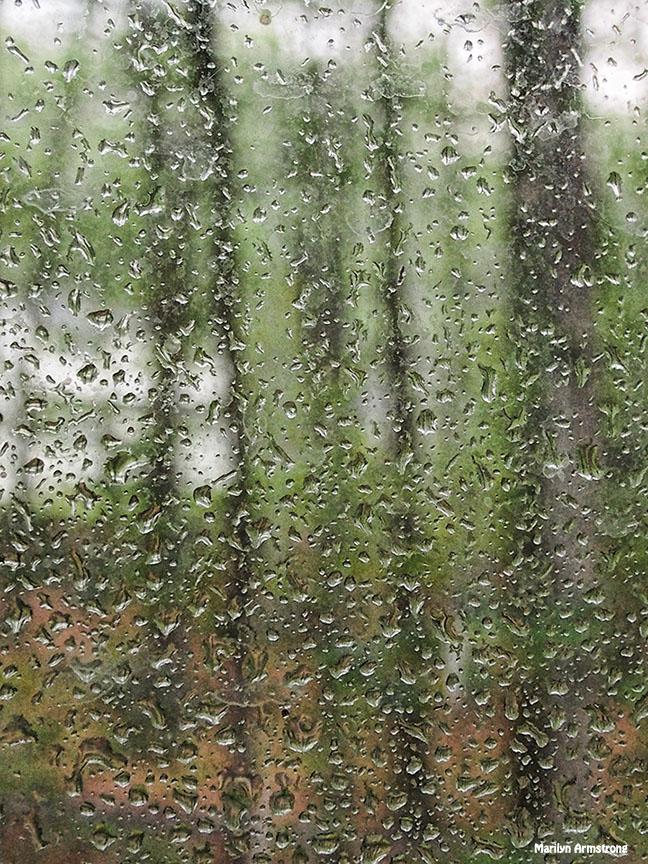 72-window-raindrops-081216_002