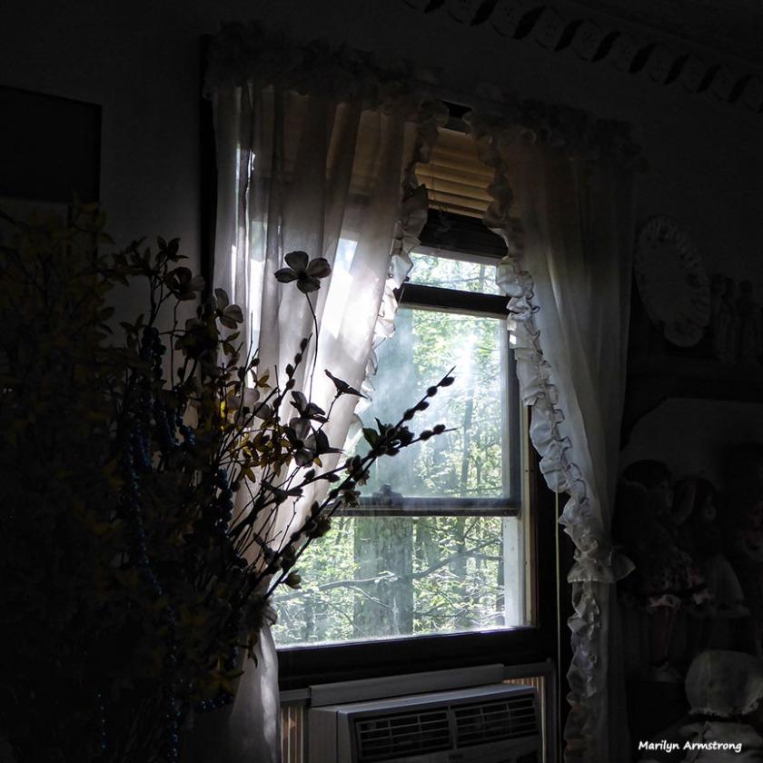 72-DR-Morning-Light-080816_06