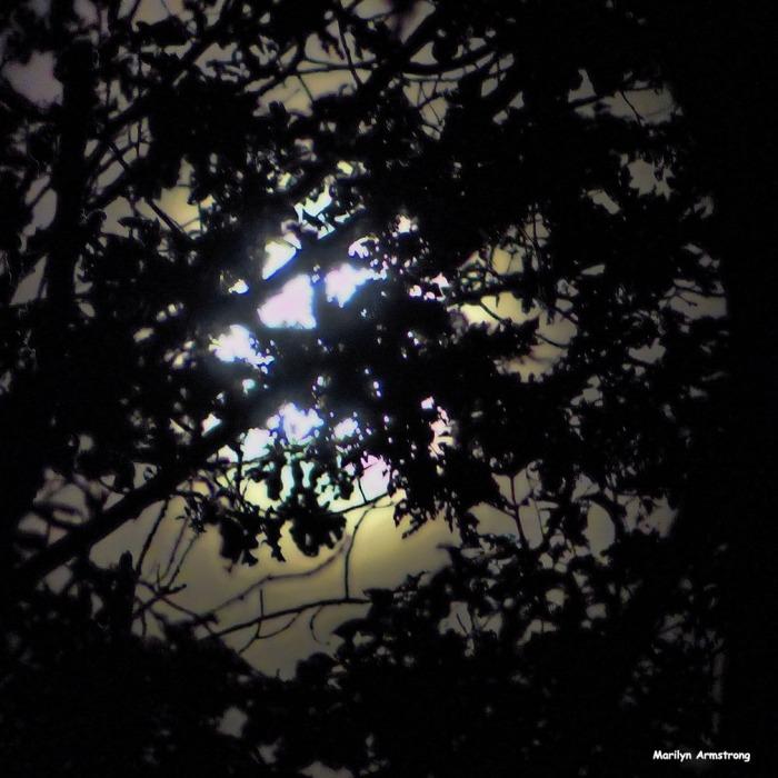 72-harvest-moon-09162016_18
