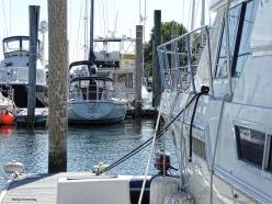 72-marina-curley-09222016_009