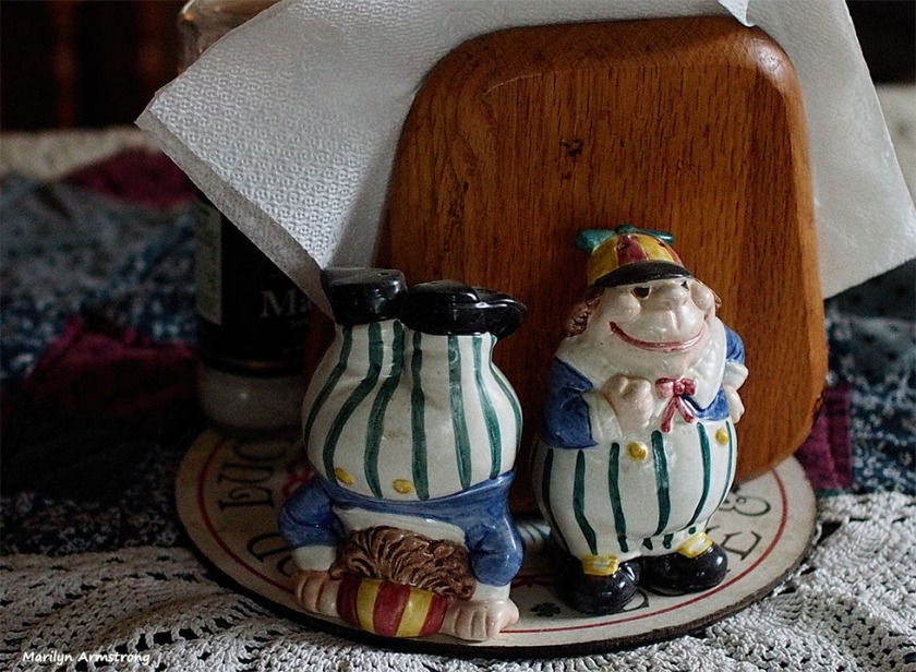 Tweedledum and Tweedledee are salt & pepper shakers. No, I don't know which is which.