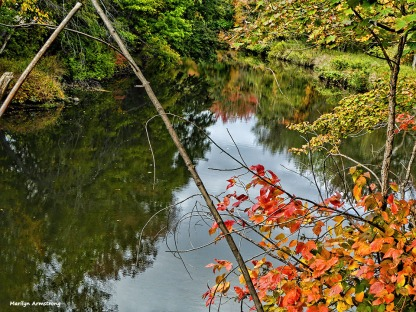 72-autumn-river-10042016_006