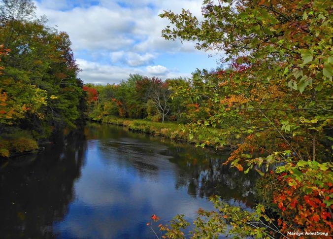 72-autumn-river-10042016_029