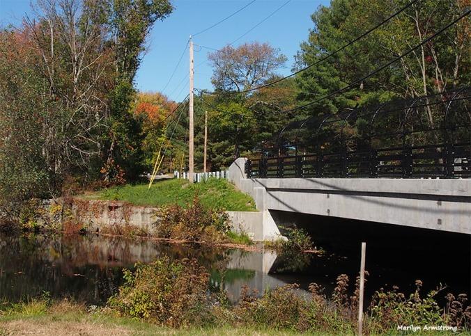 72-bridge-foliage-ri-omd-ma-10142016_076