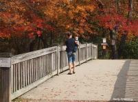 72-bridge-river-bend-ga-10172016_154