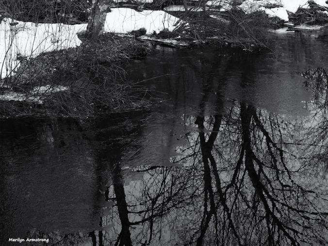 72-bw-snowy-river-032015_65