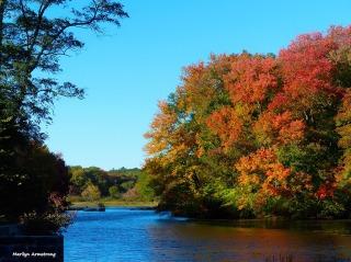 72-dream-mumford-dam-autumn-10102016_058