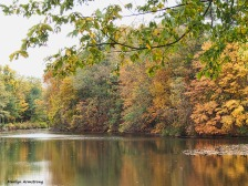 72-golden-river-bend-ma-10172016_006