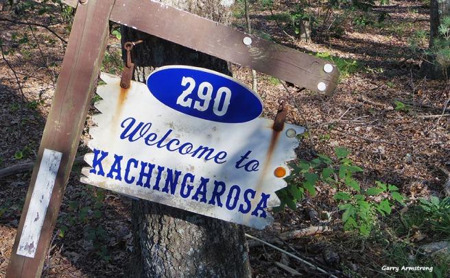 72-kachingerosa-sign-autumn-uxbridge-ga-10072016_277