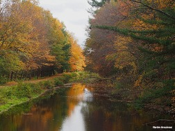 72-path-by-canal-late-autumn-ma-10202016_008