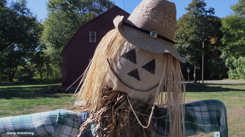 72-scarecrow-autumn-uxbridge-ga-10072016_069