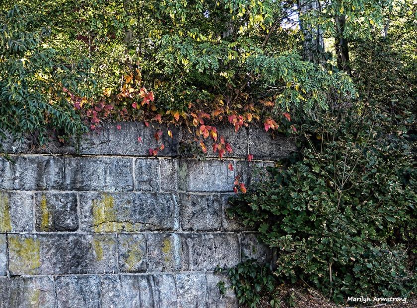 72-stone-wall-texture-mumford-dam-autumn-10102016_089
