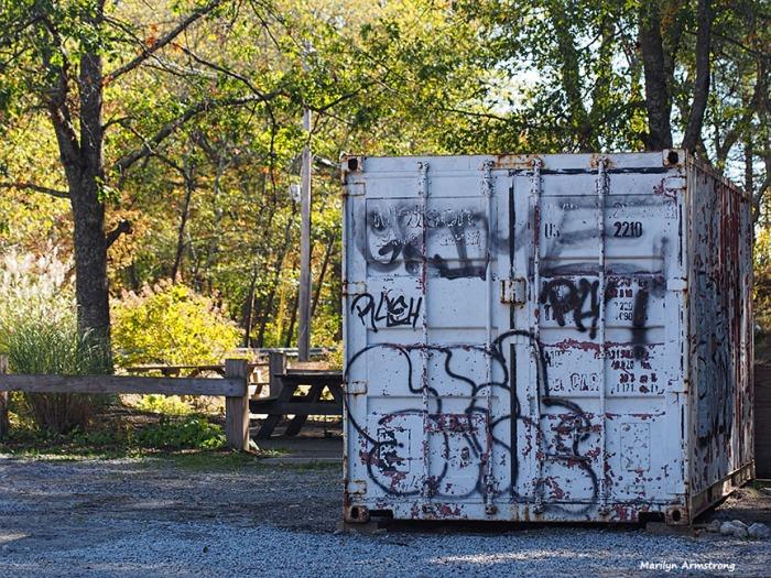Graffiti on the bin in the park