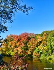 72-vertical-mumford-dam-autumn-10102016_032