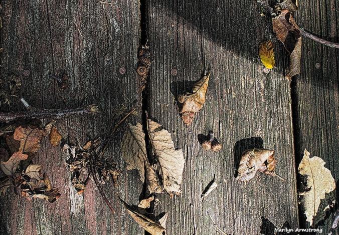 72-wood-shadow-deck-10052016_014