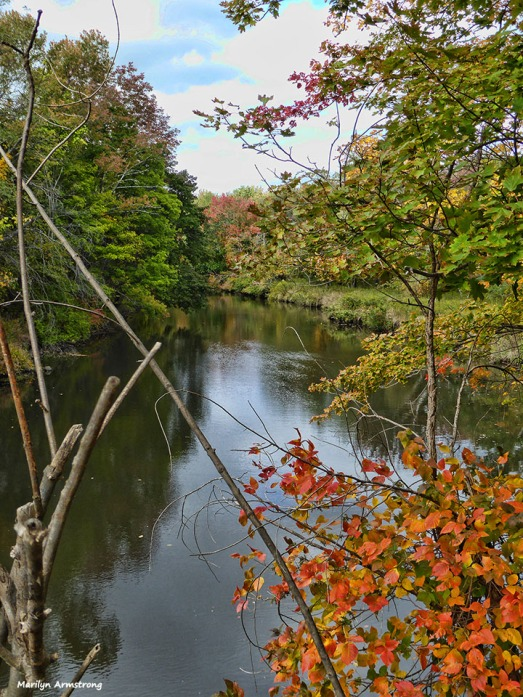72-autumn-river-10042016_014