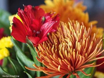 72-bouquet-22112016_00
