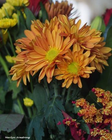 72-bouquet-22112016_014