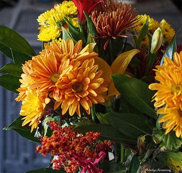 72-bouquet-lr-28112016_052