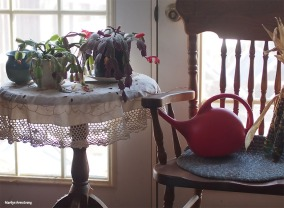 72-dining room cactus-garden-28112016_037