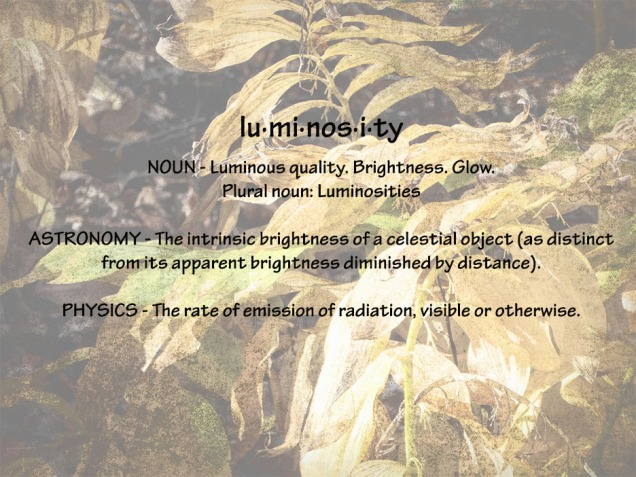 72-luminosity-def-election-day-08112016_10