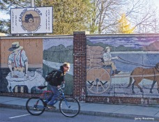 72-mosaic-bicycle-mumford-ga18112016_082
