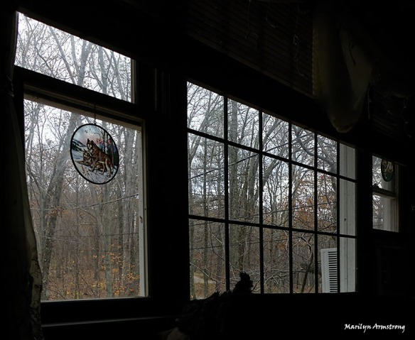 72-picture-window-fz300-16112016_001
