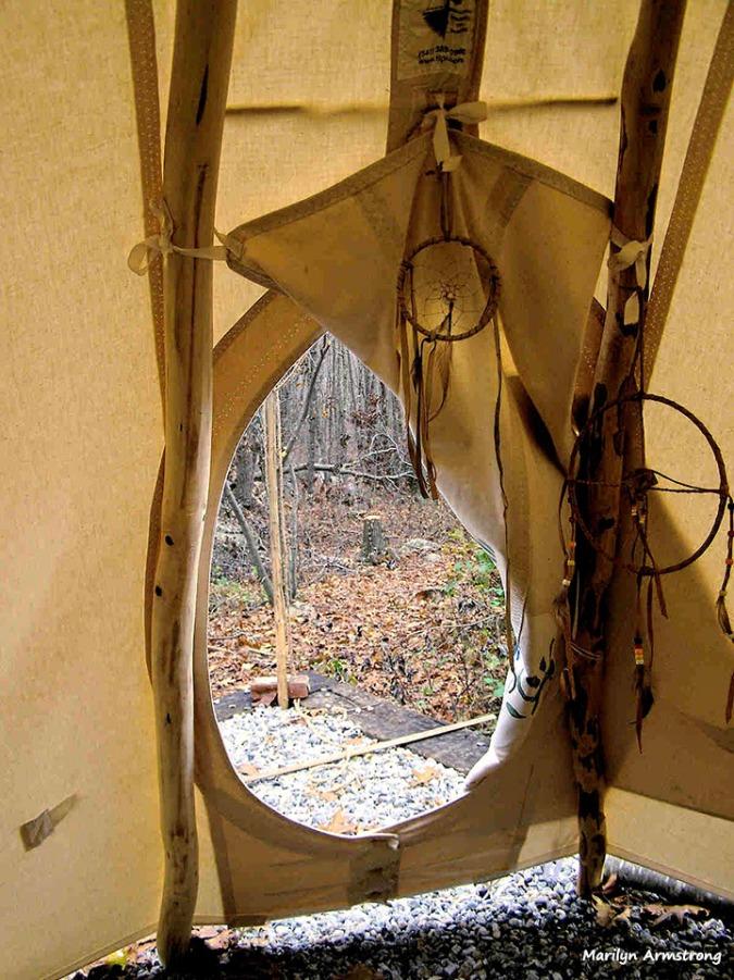 Looking into the woods from the open teepee door.