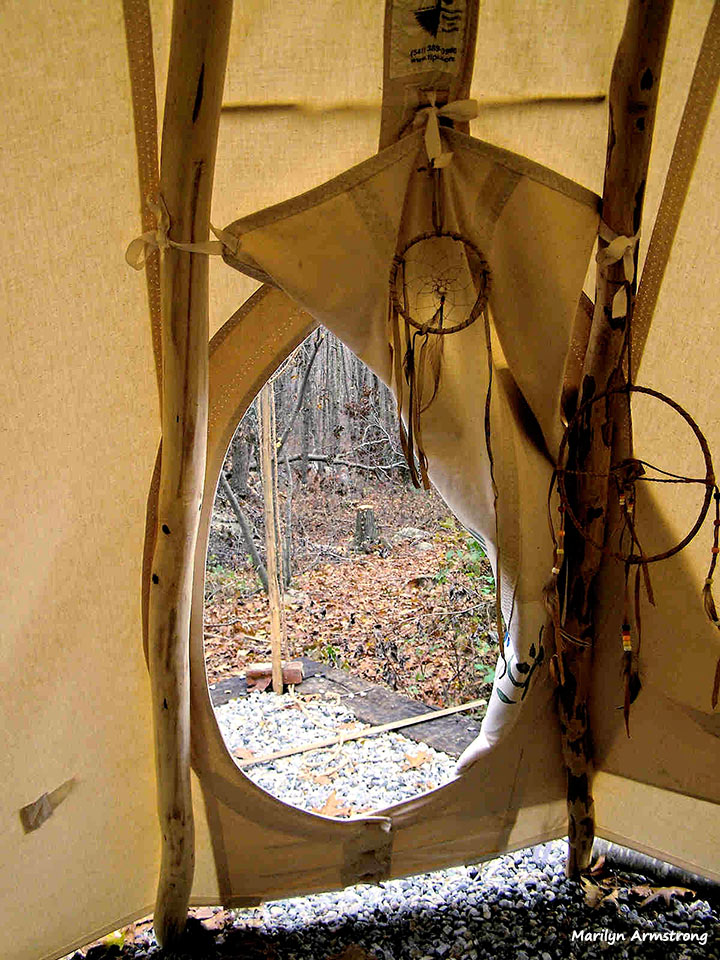 Looking into the woods from the open teepee door.