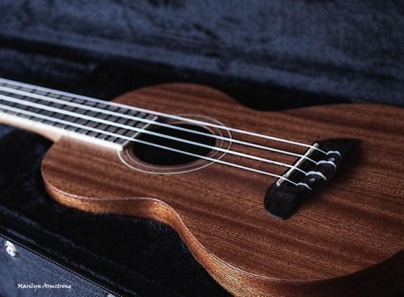 72-ukulele-13112016_05