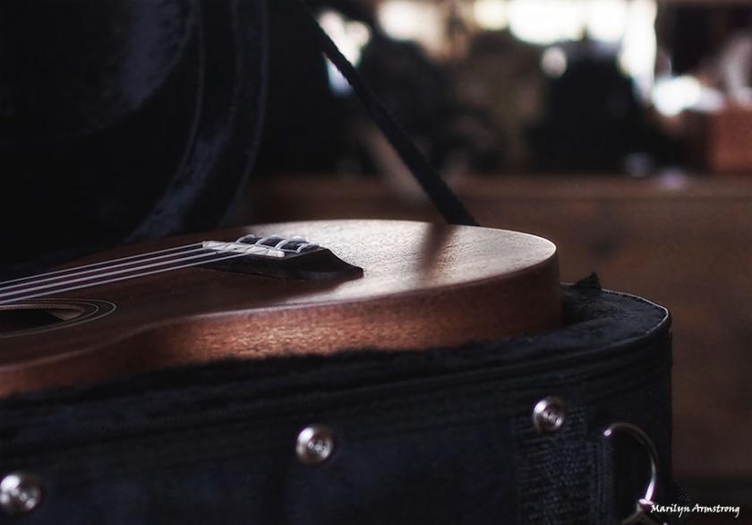 73-ukulele-13112016_0