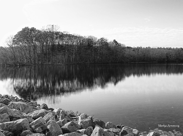 180-bw-whitins-pond-reflections-nov-gold_019