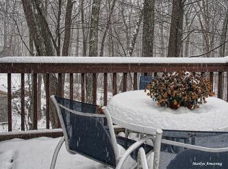 300-falling-snow-deck-17122016_003