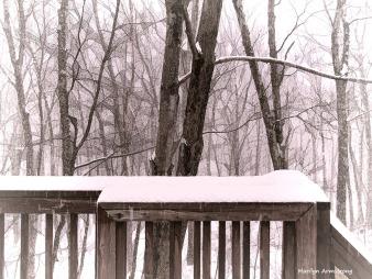 300-snowing-17122016_002