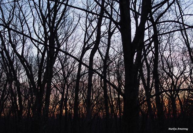 300-wiinter-solstice-sunrise-21122016_008