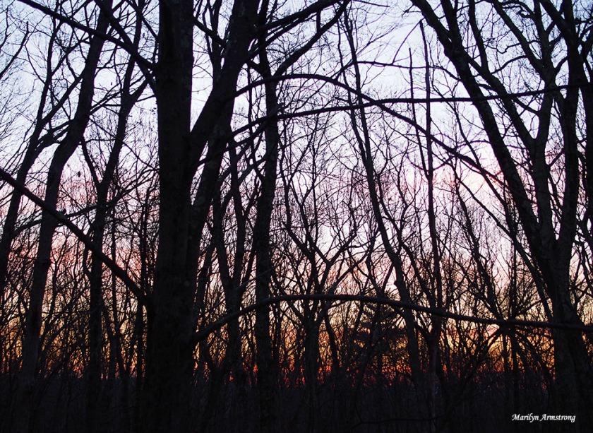 300-winter-solstice-sunrise-21122016_004
