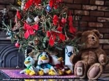 72-christmas-tree-02122016_015