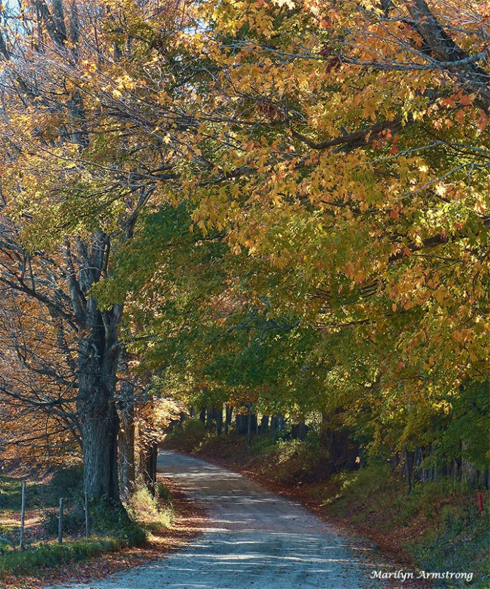 72-country-road-peacham-sunday_098