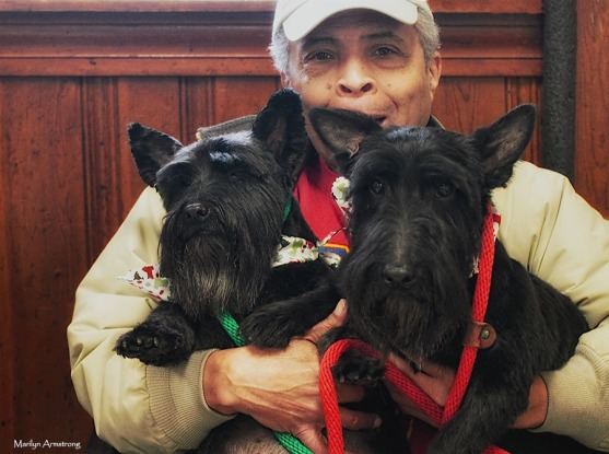 72-dog-grooming-day-07122016_04