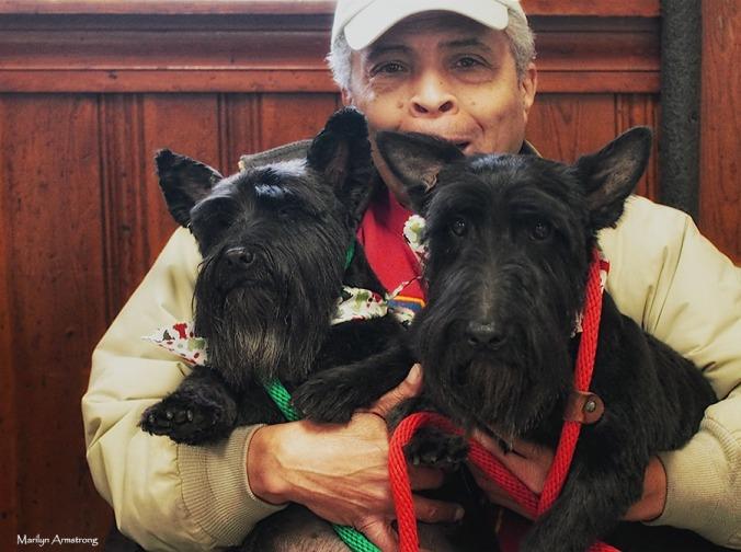 72-dog-grooming-day-07122016_041