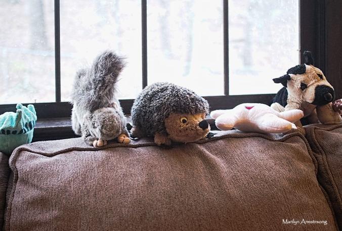 72-stuffed-dog-toys-09122016_016