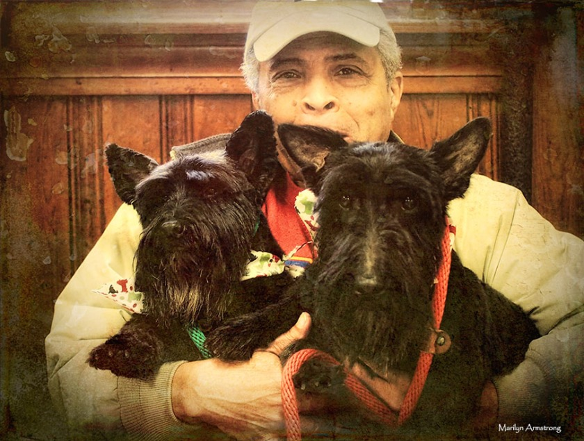 72-vintage-dog-grooming-day-07122016_03