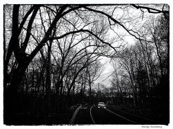 180-bw-car-sunset-aldrich-st-210117_19