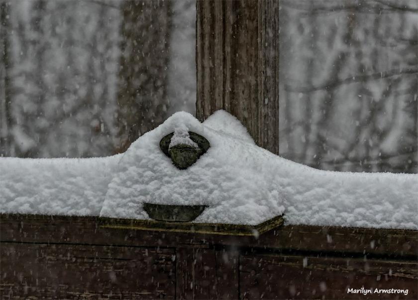 180-stone-frog-new-snow-07012017_28