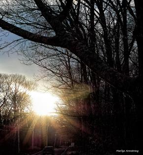 180-sunset-aldrich-st-210117_05