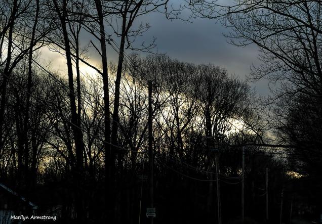 180-sunset-aldrich-st-210117_16