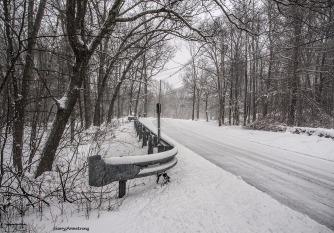 300-aldrich-st-gar-new-snow-07012017_025