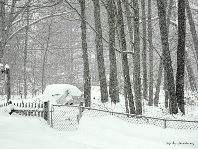 300-blizzard-snow-2-9-2014_070
