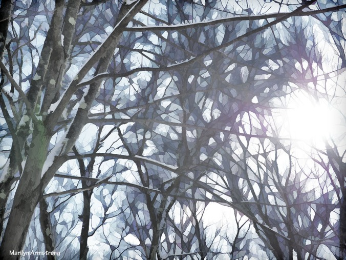 300-buzz-morning-after-snow-08012017_022